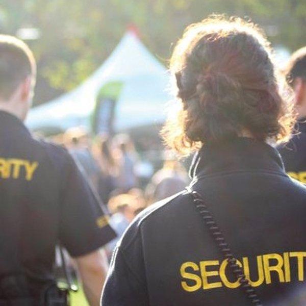 Seguridad conciertos